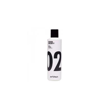 ARTE'GO - GOOD SOCIETY - Rich color shampoo 02 (250ml) Shampoo