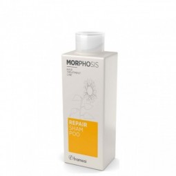 FRAMESI - MORPHOSIS - REPAIR Shampoo (250ml)